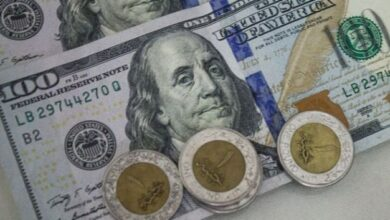 صورة المشاط: 80 مليون يورو للشريحة الأخيرة بمبادلة الديون مع ألمانيا