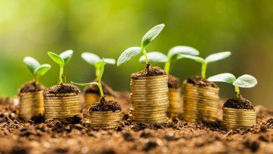 صورة «ميونيخ ري للتأمين» تصدر سندات خضراء بقيمة مليار يورو لتعزيز قاعدتها الرأسمالية