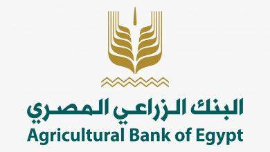صورة البنك الزراعي يُتيح تيسيرات جديدة للمستفيدين من قرض «باب رزق» إحتفالاً بعيد الفلاح
